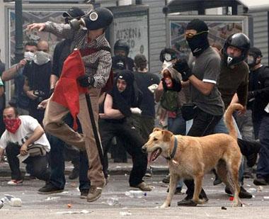 Храброто куче-демонстрант