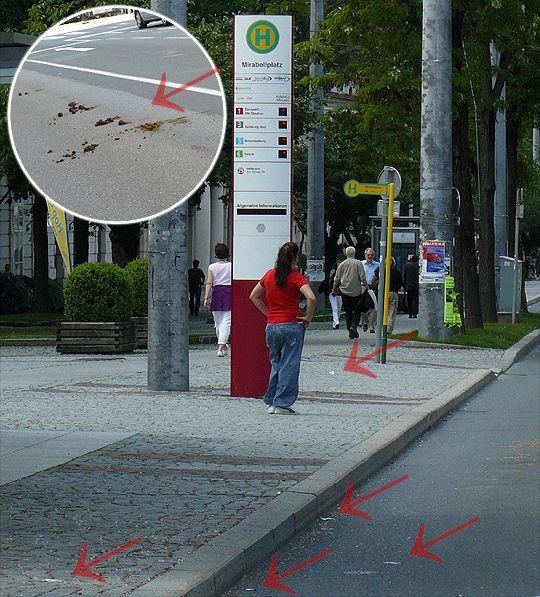 Мръсна автобусна спирка в Залцбург