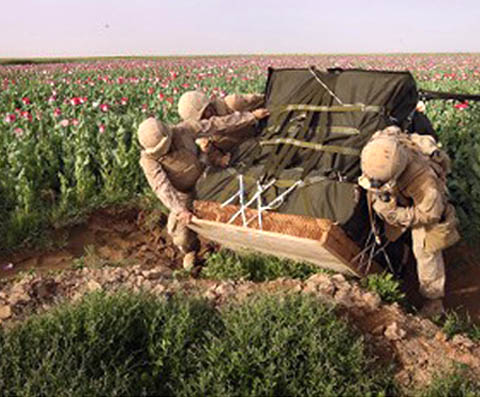 Войници и опиумни полета.