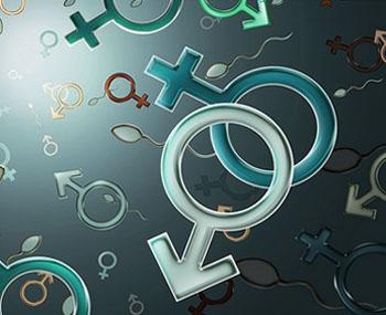 Разделението на половете