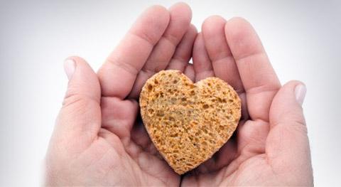 Първи инициативи за безплатния хляб: за да няма глад по Земята