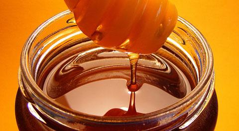 Рудолф Щайнер за храните: хляб, мед и полски хвощ