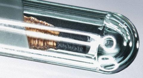 На хартия: 10 мита и факти за имплантирането на чипове