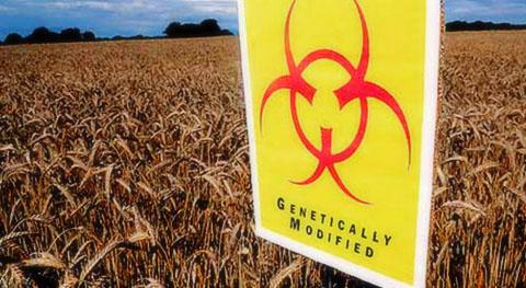 ЕС криминализира нерегистрирани семена и частни градини