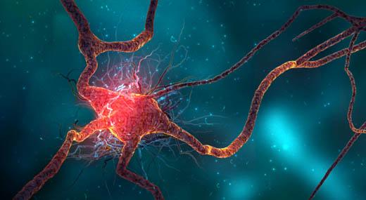 5 лесни начина да обновите мозъка си чрез неврогенеза
