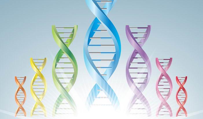 Критичен разбор на ново генетично изследване сред българите