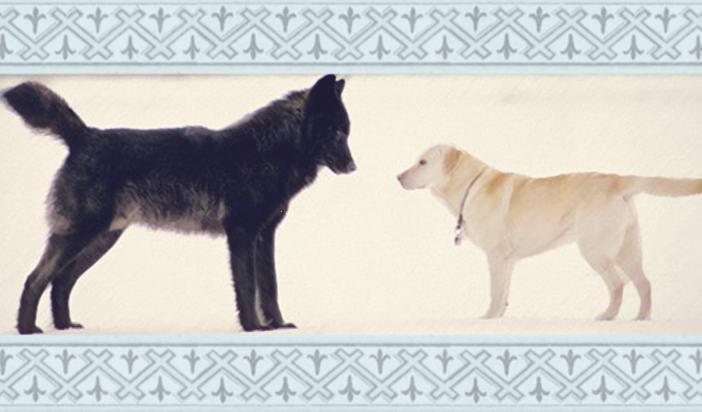 """Лев Толстой — """"Вълкът и кучето"""""""