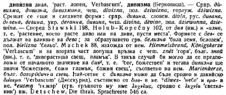 Как славянските думи в тракийския език станаха албански - дивизма