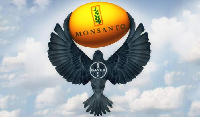 Bayer купува Monsanto: Отвъд видимото на повърхността