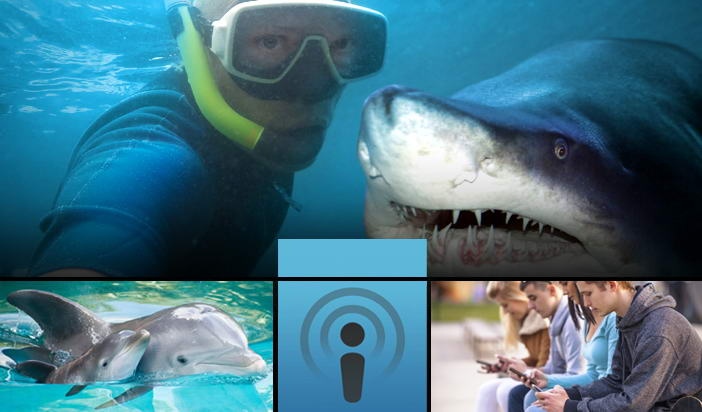 Selfish Selfies: Изгубените души на селфи маниаците