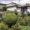 Заобиколно до Рила (3): Благите ухания на Гнидобрадско